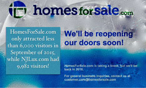 njlux-com-had-over-160-more-visitors-than-homesforsale-com