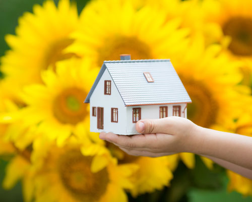 Ideas For Your Summer Home Renovation
